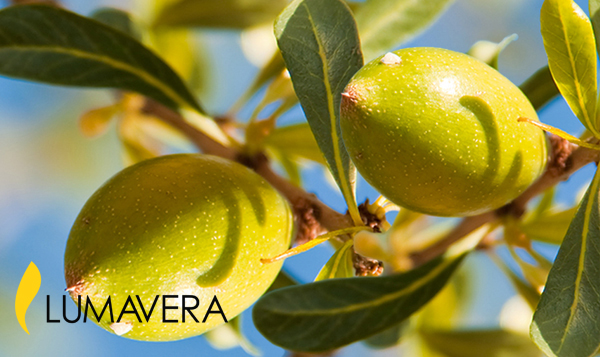 Argan Tree Stem Cells for Skin